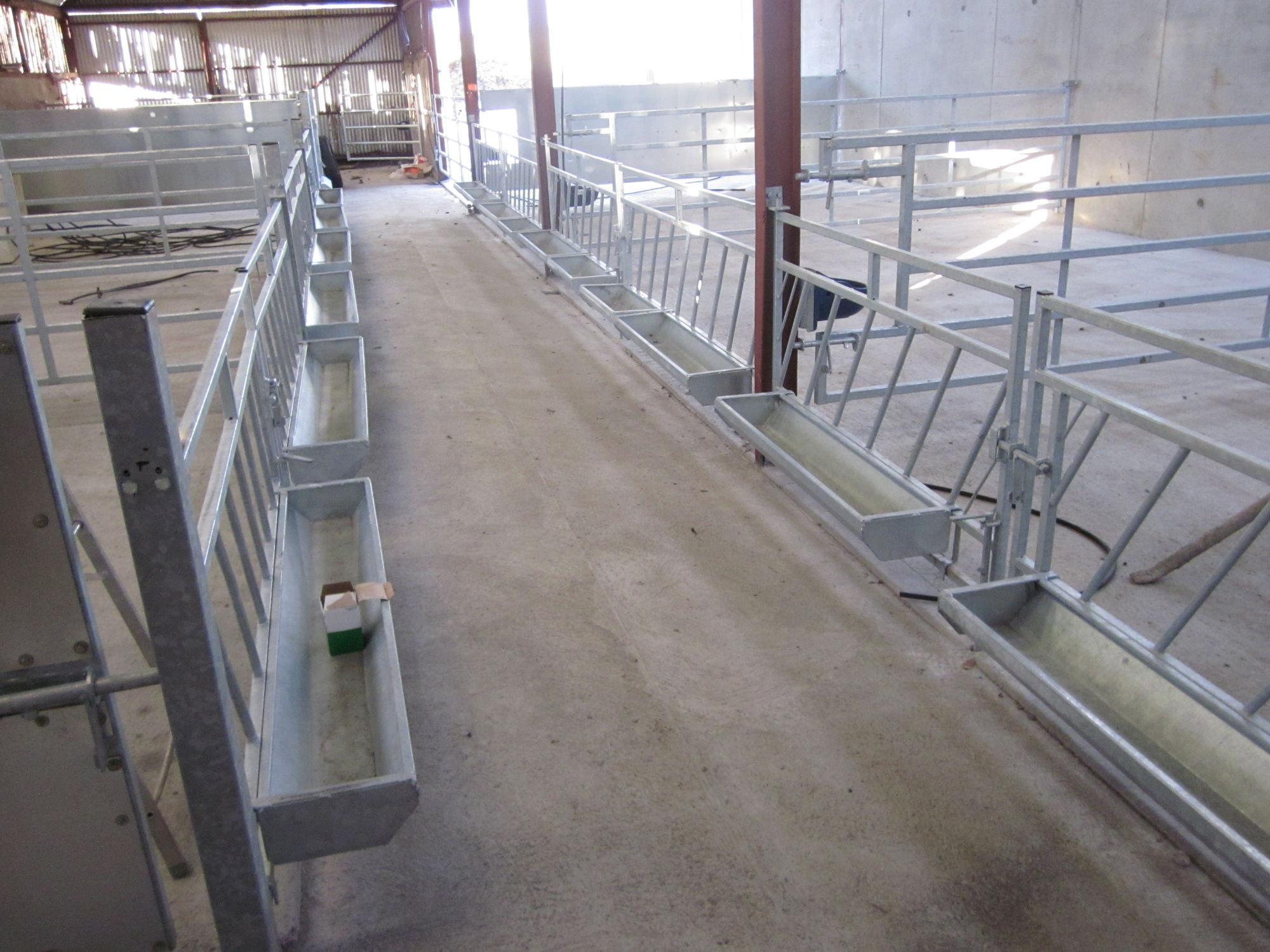Trennwand Für Zuchtzwecke Für Rinder Metall Calf Pen Division