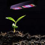 Gartenbau-Beleuchtung / LED / blau / rot