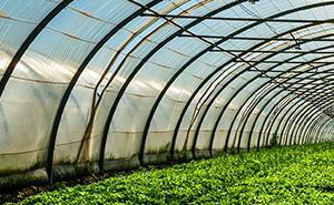 Instalaciones agrícolas