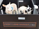 cajón calentador para ganado ovino