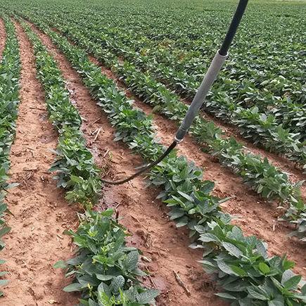 système d'arrosage goutte-à-goutte mobile - pmdi - t-l irrigation