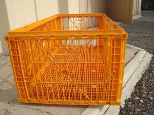 cages de transport volaille