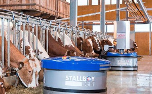 Livestock equipments