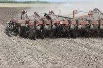 Trailed disc harrow / with hydraulic adjustment / 3-point hitch