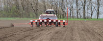 Precision seed drill with fertilizer applicator / trailed / depth control / disc