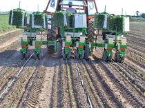 Lettuce transplanter / tomato / tobacco / semi-mounted
