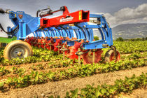 Front-mount row crop cultivator / disc