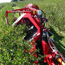 Berry harvester / trailed / single-row