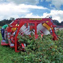 Raspberry harvester / trailed / single-row