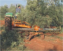 Tree branch rake / rotary / side delivery / arboriculture