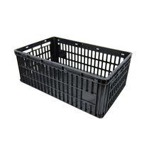 Chicken transport box / plastic