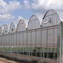 Multi span greenhouse / commercial production / with gutter