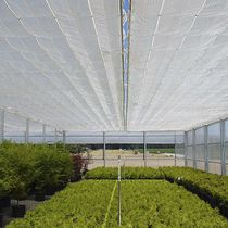 Ornamentals production greenhouse / gardening / flat roof