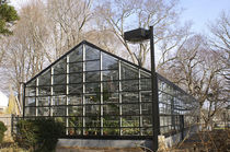 Sawtooth greenhouse / research / glass