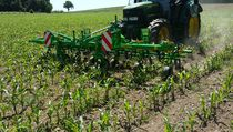 Mounted row crop cultivator / folding / fixed