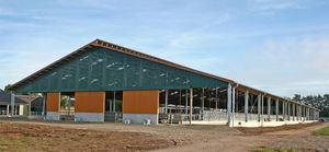 barn a cow modern cattle beds clip moos barns dairy inside