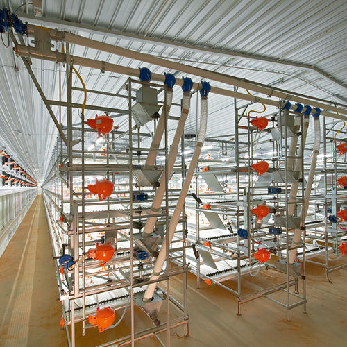 broiler rearing cage