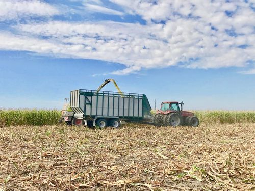 2-axle trailer / silage