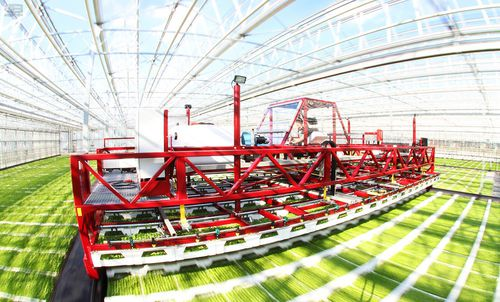 greenhouse transport cart / rail-mounted