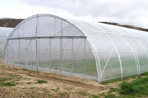 monotunnel greenhouse - Ulma