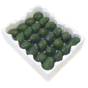 vegetable crate - Beaver Plastics Ltd