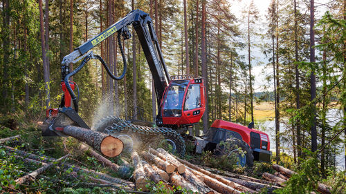 forestry harvester with crane