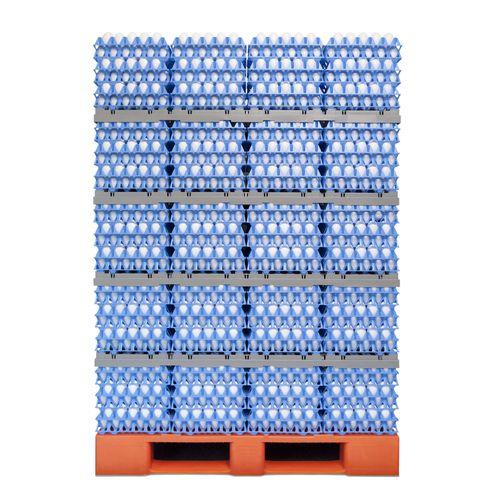 transport egg tray / divider / plastic