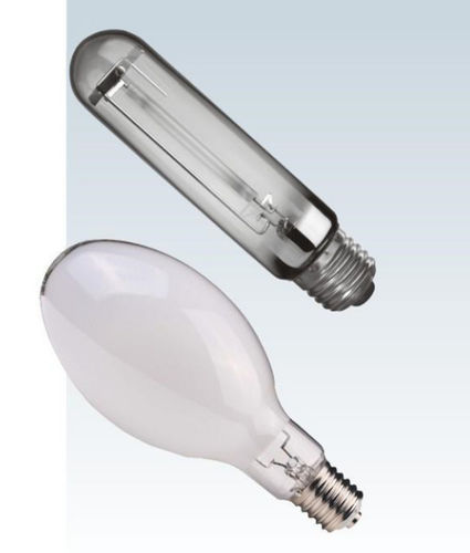 xenon light bulb / for lamps