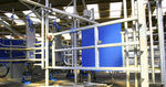 cow identification system / automatic / for milking parlours