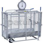 sheep scale / for calves / analog / platform
