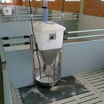 pig feeding system / tube / programmable / dry feed