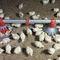 poultry pan feeder / plastic / multi-accessKONAVI®choretime