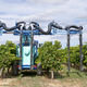 viticulture sprayer / trailed / air-assisted / pneumatic