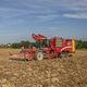 potato harvester / self-propelled / mutli-row