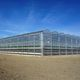 venlo greenhouse / for production / ornemental
