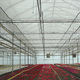 shade curtain / for greenhouses
