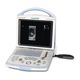 portable veterinary ultrasound system / for equines