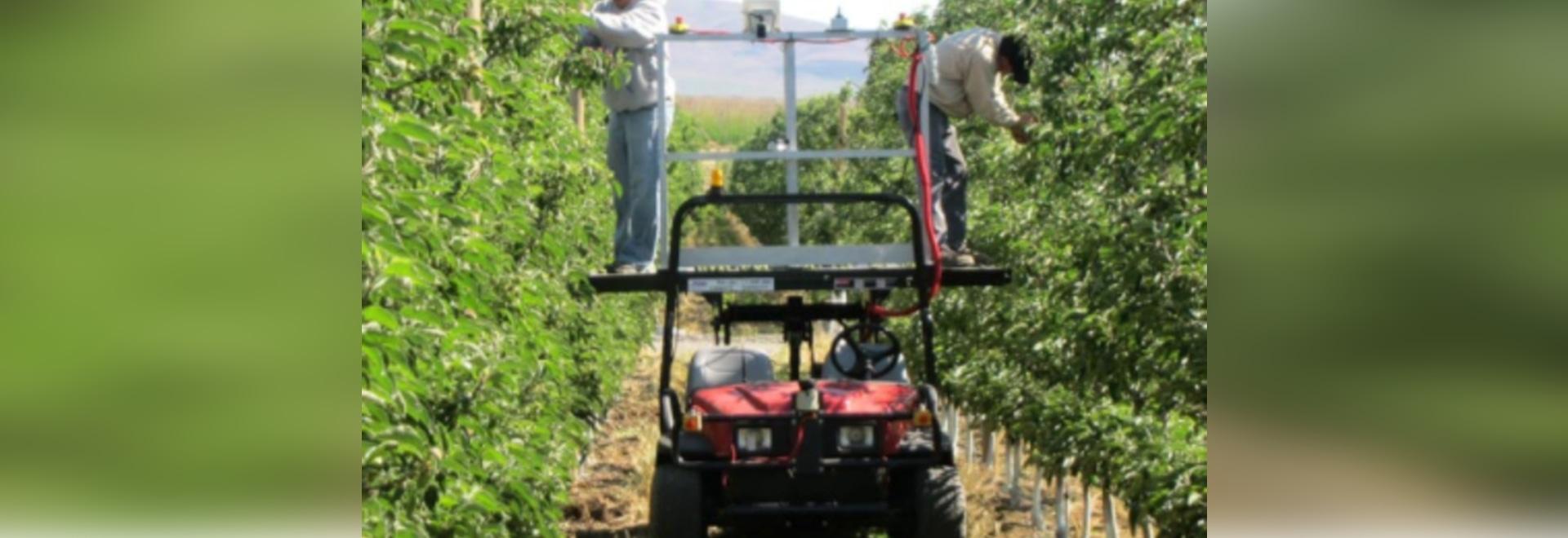 Autonomous Orchard Vehicles