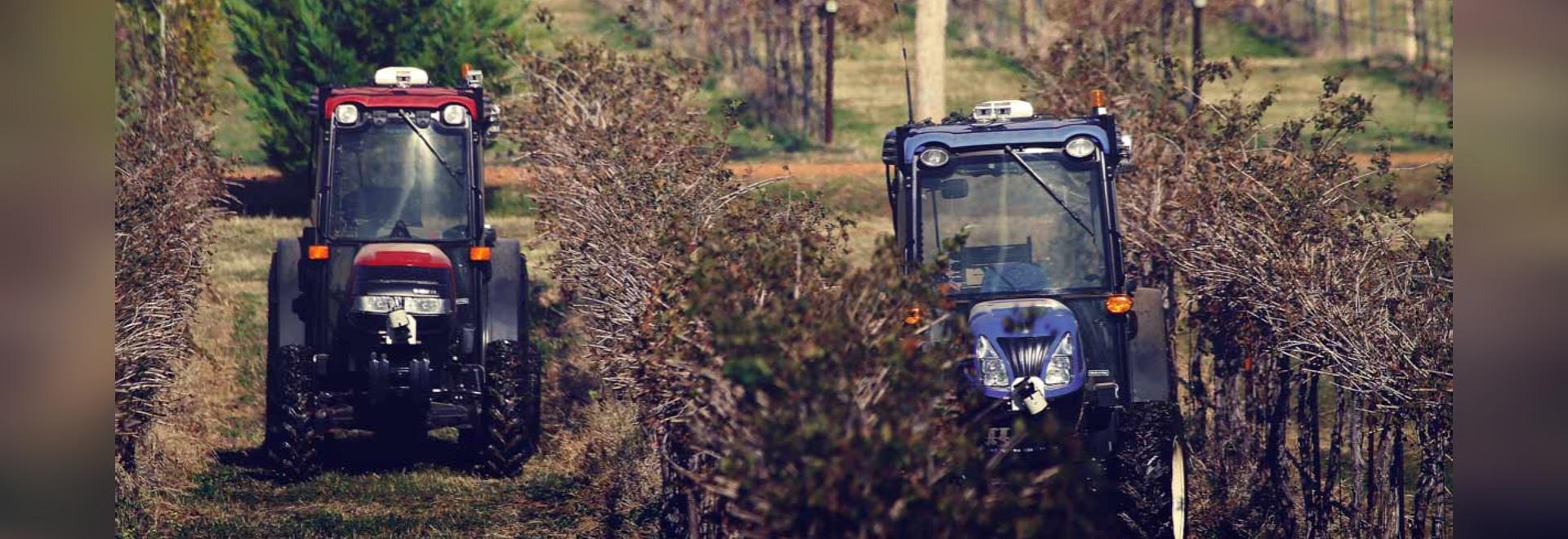 Orchard & Vineyard Coverage