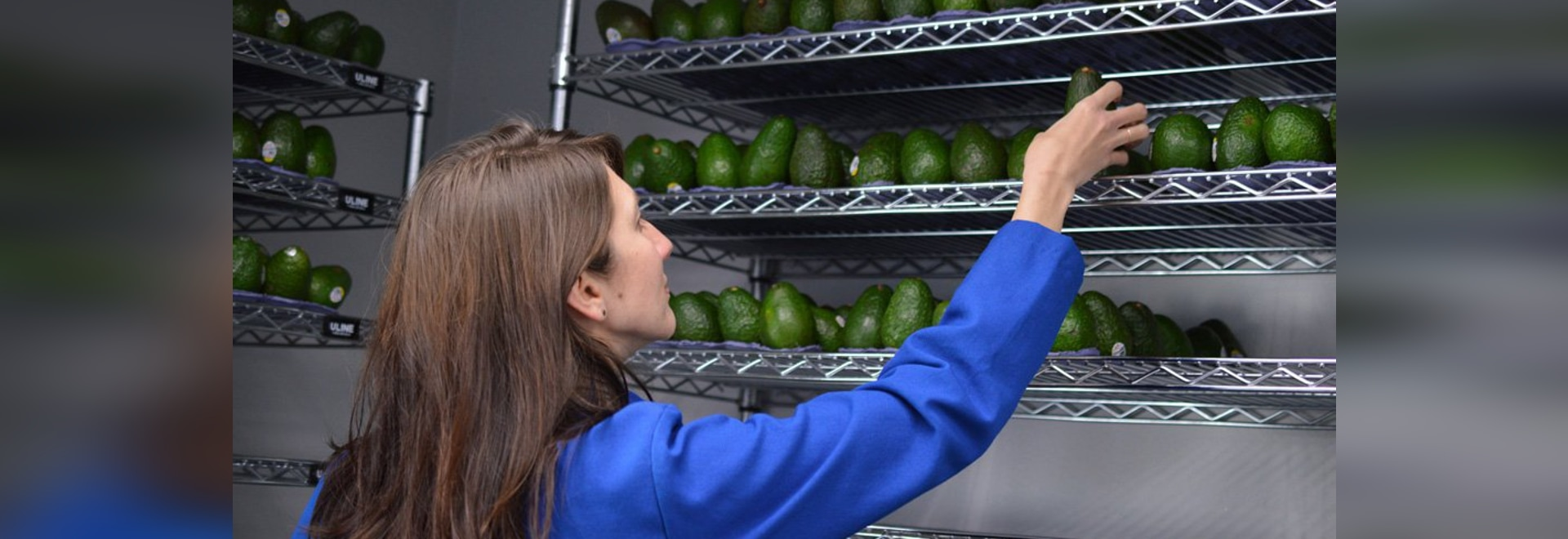 Spray this invisible, edible coating on produce and it could last five times longer