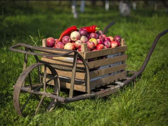 Abundant Robotics spins out of SRI to bring apple-picking robots to the farm