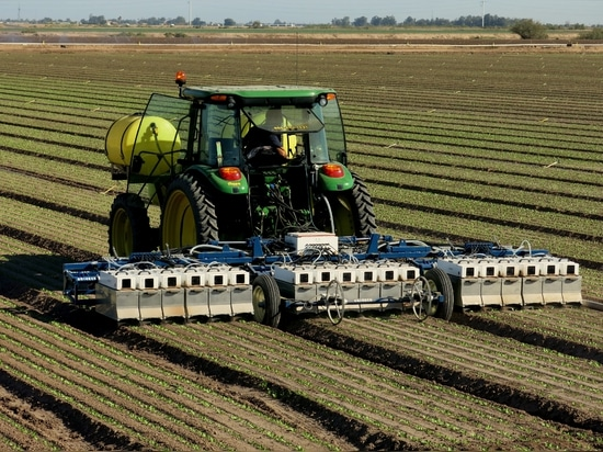 Lettuce-Weeding Robots, Coming Soon to a Farm Near You