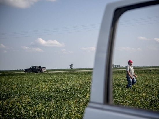 This miracle weed killer was supposed to save farms. Instead, it's devastating them.