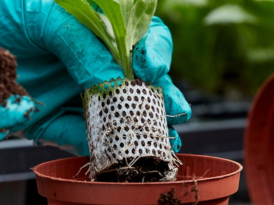 Oasis Introduces New Biodegradable Paper Wrap for Plant Propagation