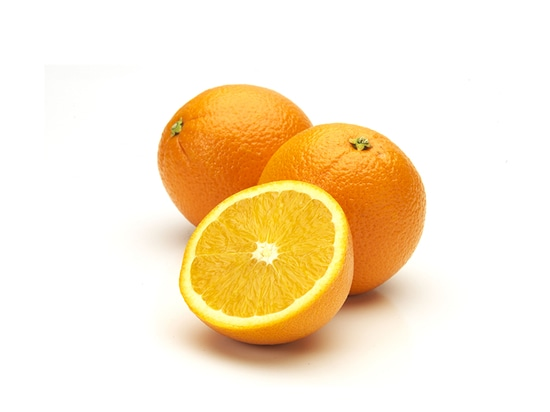 Florida conference to reveal citrus grower research