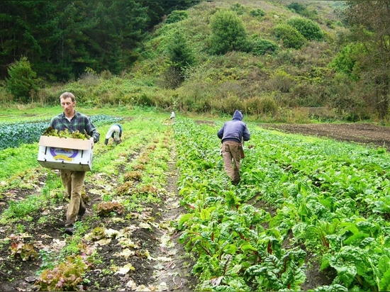 Farm Bureau releases strategic action plan goals for new year