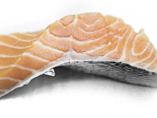 When should you harvest your salmon?
