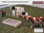 kit di analisi per latte / per amiloide A / per clinica veterinaria