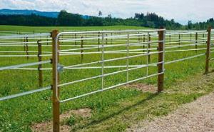 Cercas - Barreiras - Contenção de gado