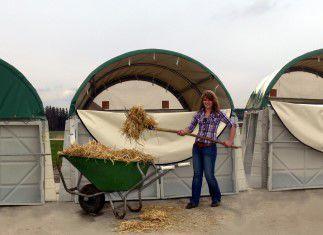 Abrigo para pecuária   para bezerros   coletivo   em aço - AGROTEL GmbH 779b2964a758